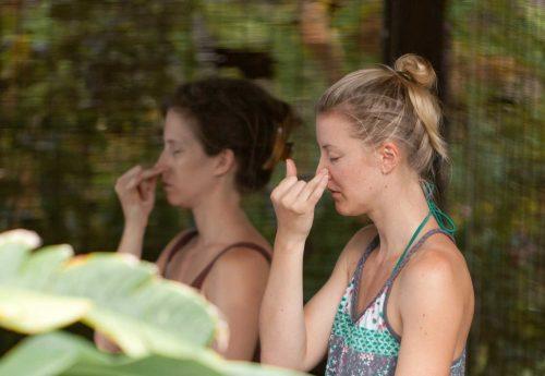 חופשת ניקוי רעלים מהגוף בתאילנד
