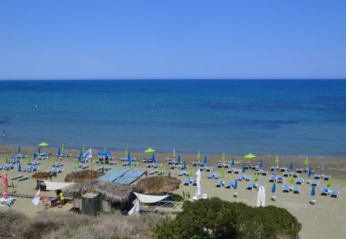 חבילת סאפ בקפריסין למתקדמים
