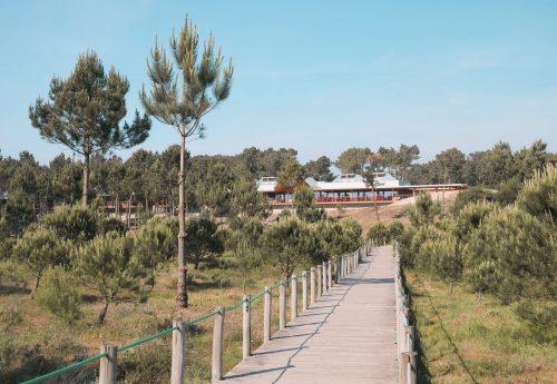 יוגה וסאפ בצפון פורטוגל
