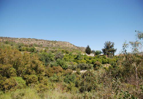 סדנת אנרגיית החיים בהרי קפריסין