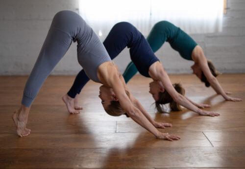 סדנת יוגה וניקוי גוף נפש ברמת הגולן
